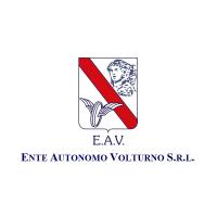 logo trasporto eav